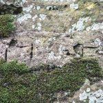 Aliensymbole in Fels gemeißelt