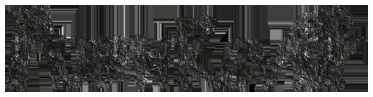 Ausm-Revier-Logo-138