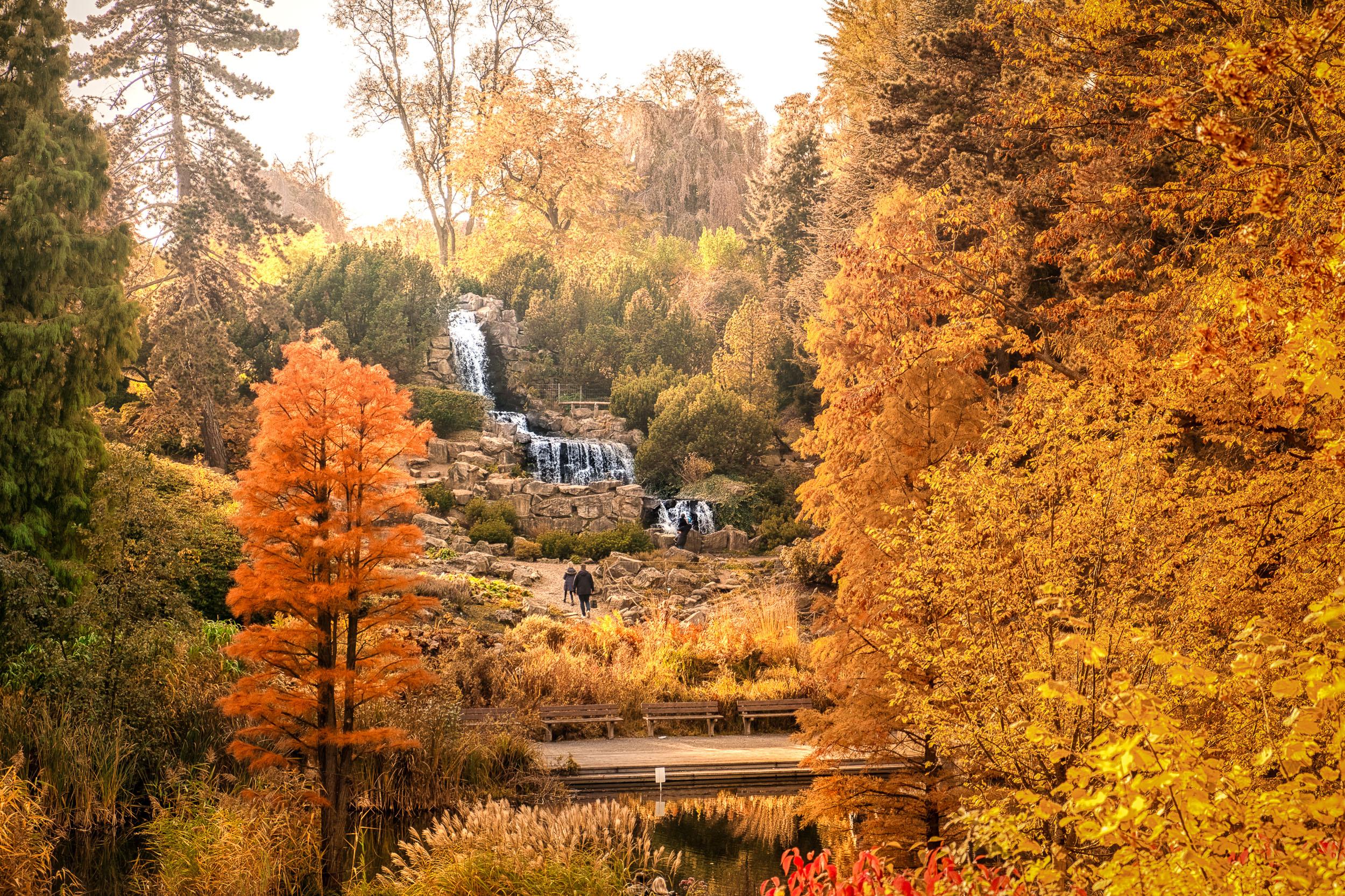 Ein Herbstbesuch im Grugapark