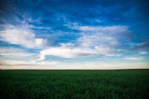 Die wunderschönen Felder (Doveren/Hückelhoven Baal)